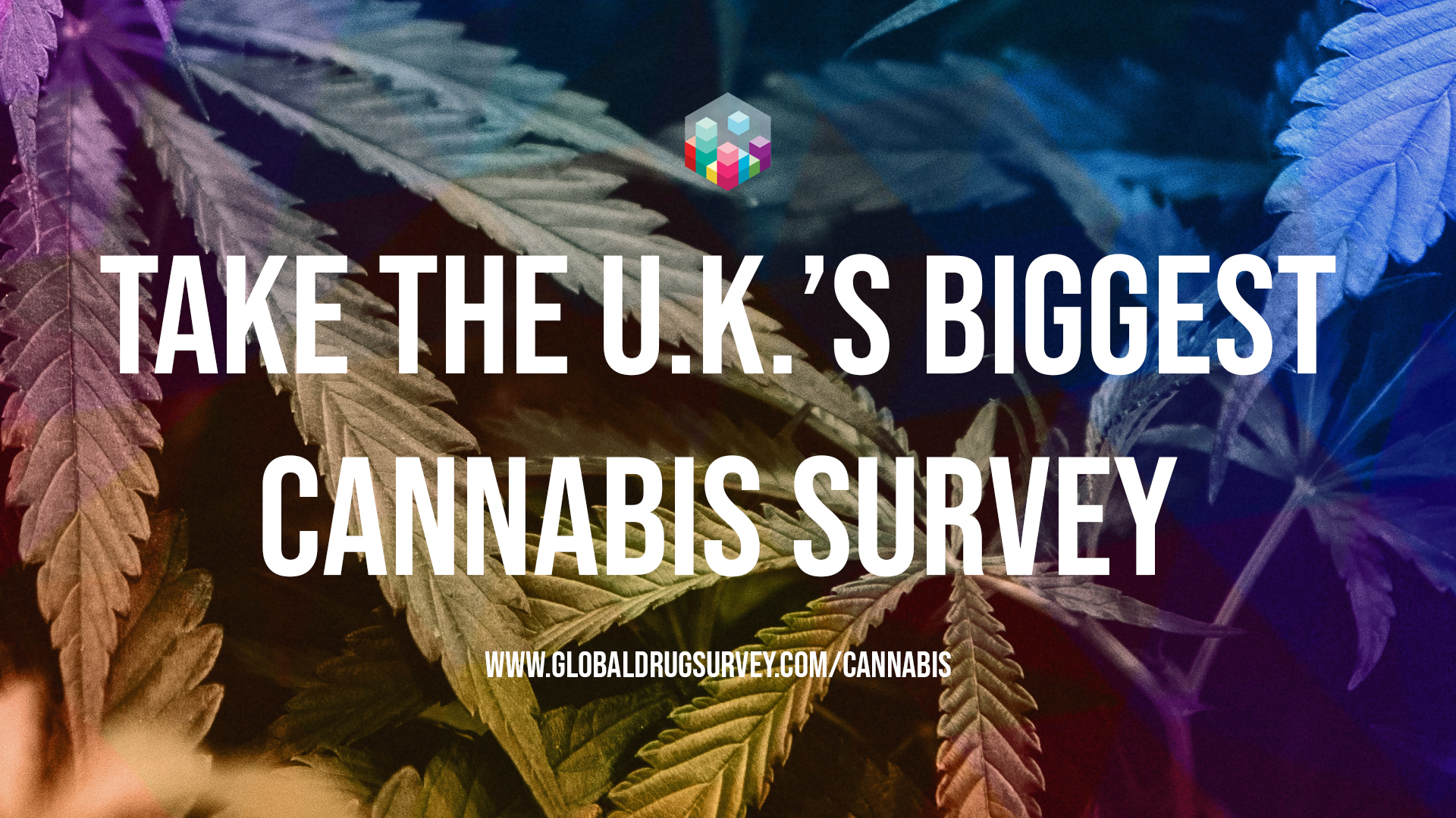 GDS Cannabis Survey